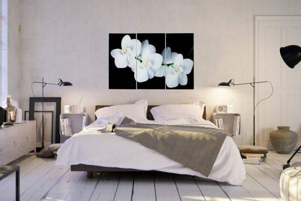 Obraz Orchidee 60x30cm 3-teilig sklo