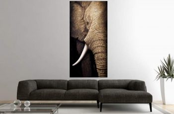 Olejomaľba slon Wisdom Of Nature 75 x 150 cm