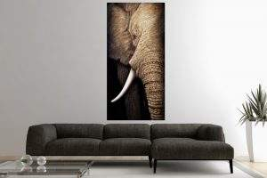 OlejomaľbaWisdomOfNature 75x150cm Elefant