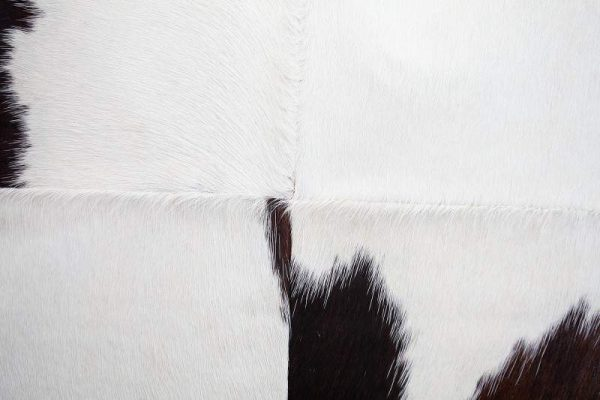Vankúš Rodeo hnedá biela 45 x 45 cm