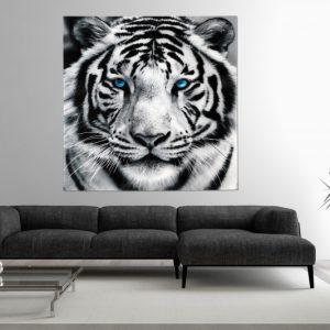 Obraz-Tigre-80x80cm-sklo