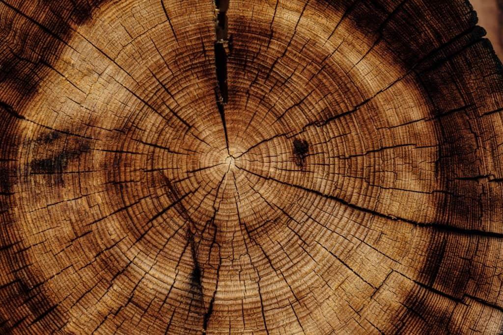 drevený peň na nábytok