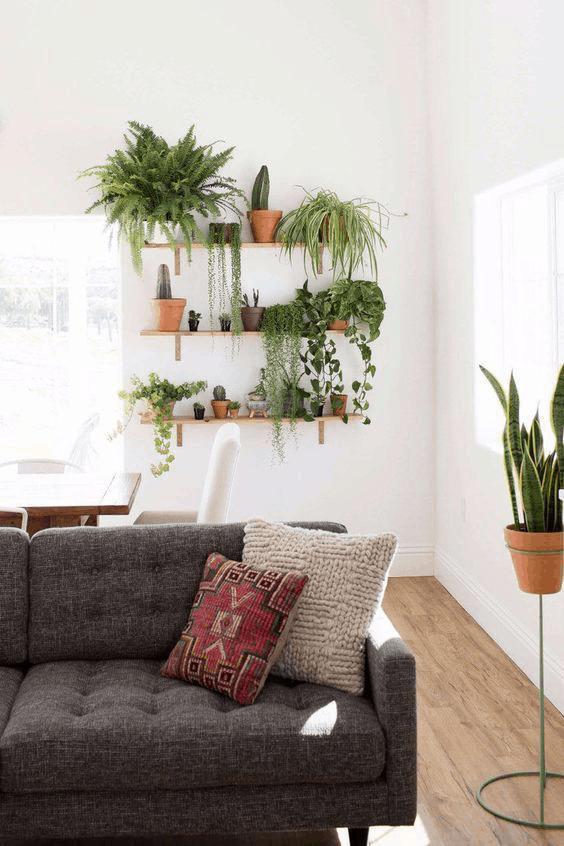 kvety v obývačke