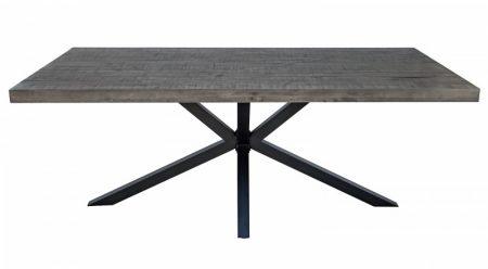 Jedálenský stôl Galaxie 200cm Pinie 60mm sivá