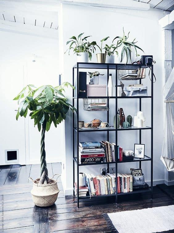 Drevené doplnky - rastliny do domácnosti